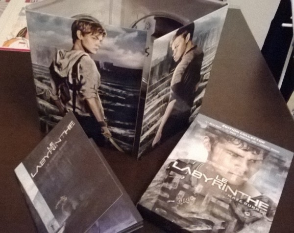 Le labyrinthe dvd bluray