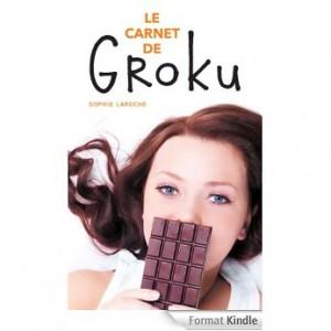 Le Carnet de Groku de Sophie Laroche