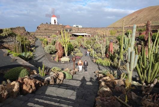 jardin cactus lanzarote canaries