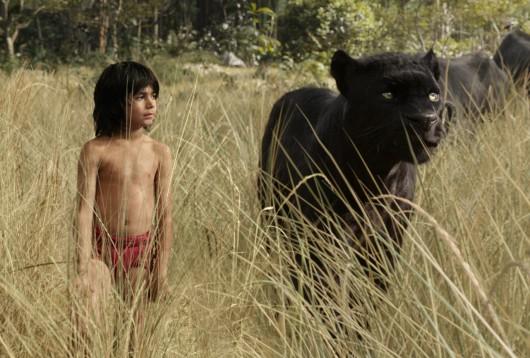 mowgli bagheera livre de la jungle