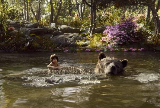 mowgli baloo livre de la jungle